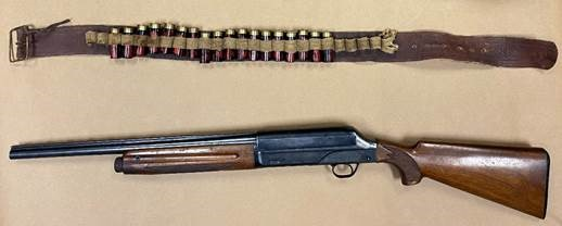 Image of firearm and ammunition